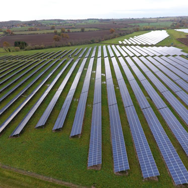 Mongoose energy solar farm